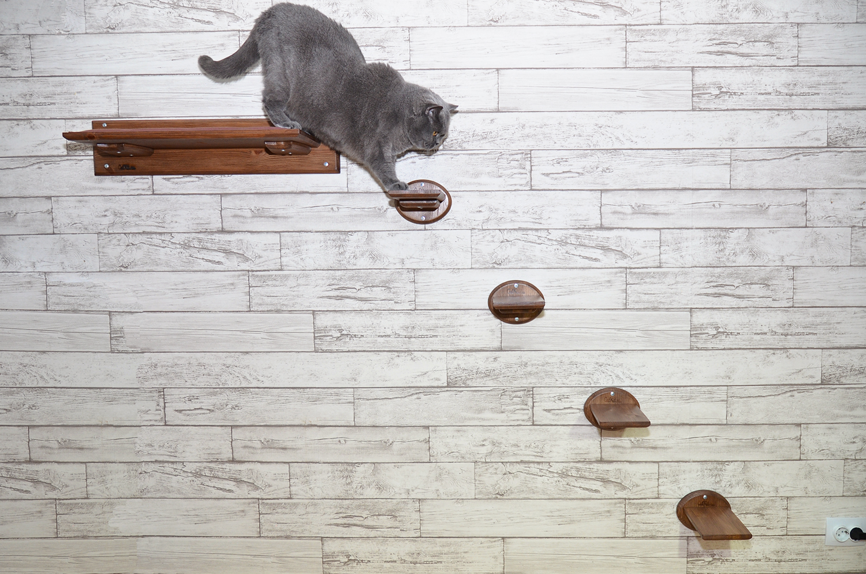Лесенка для кошек шоколад