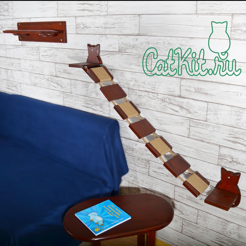 Кэткит для кошек